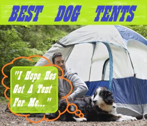 Best Tents For Dogs My Top 5 Reviews & Best Tents For Dogs u2013 My Top 5 Reviews | Sleeping With Air