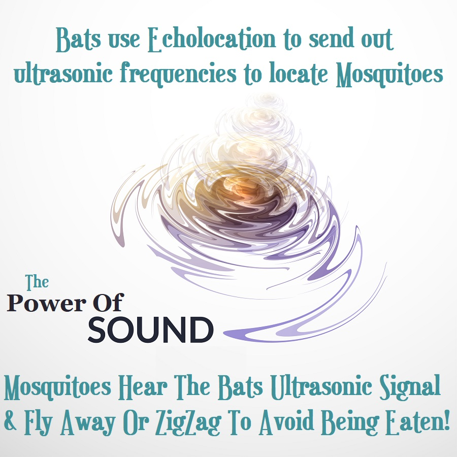 How ultrasonic frequencies deter mosquitoes