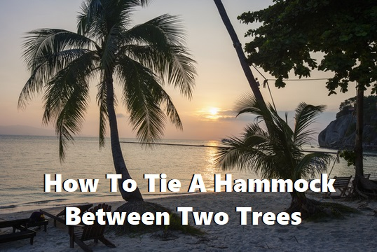 How To Tie A Hammock To A Tree
