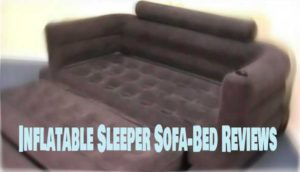 Air Mattress Sleeper Sofa Reviews Inc