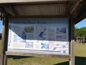 Black Rocks Campsite Review NSW