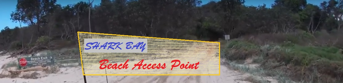 Bundjalung National Park Beach Access Point