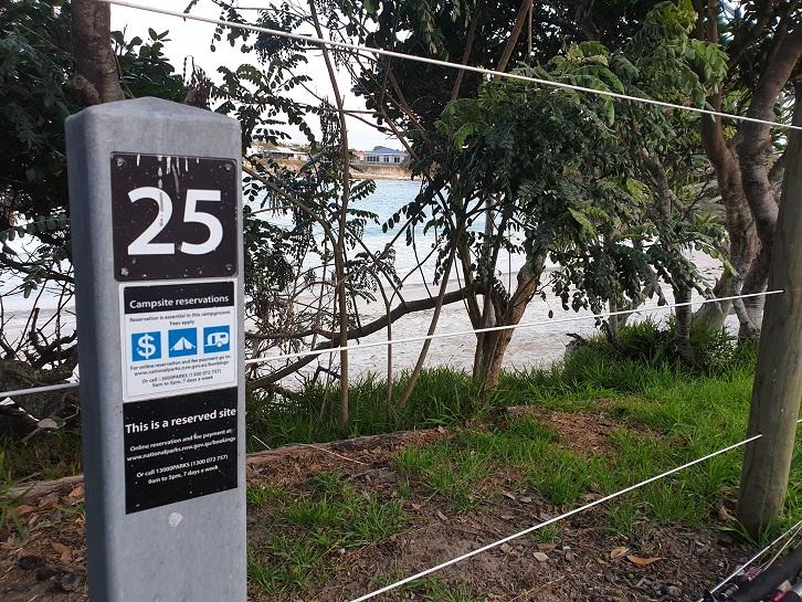 Site 25 Sandon River NSW