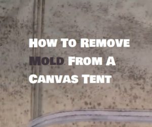 How To Remove Mold From A Canvas Tent