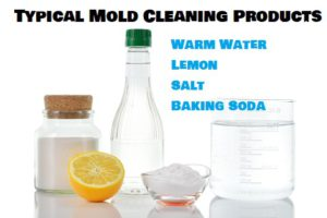 Natural Mold Cleaning Products For Mold